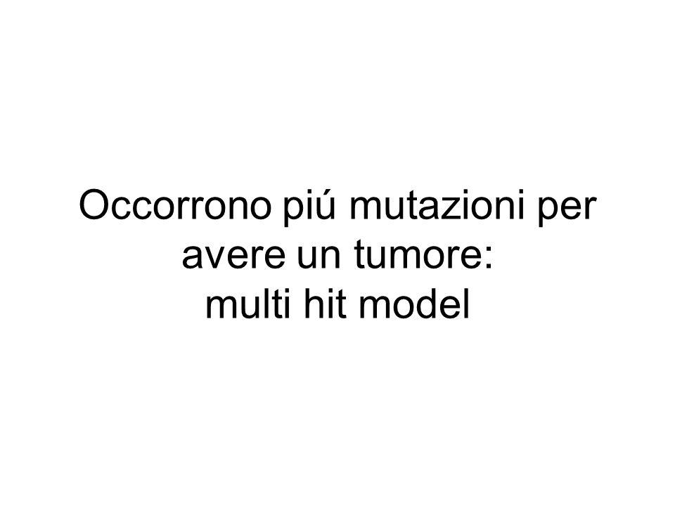 Occorrono piú mutazioni per avere un tumore: multi hit model
