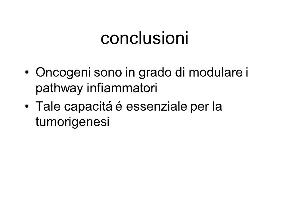 conclusioni Oncogeni sono in grado di modulare i pathway infiammatori