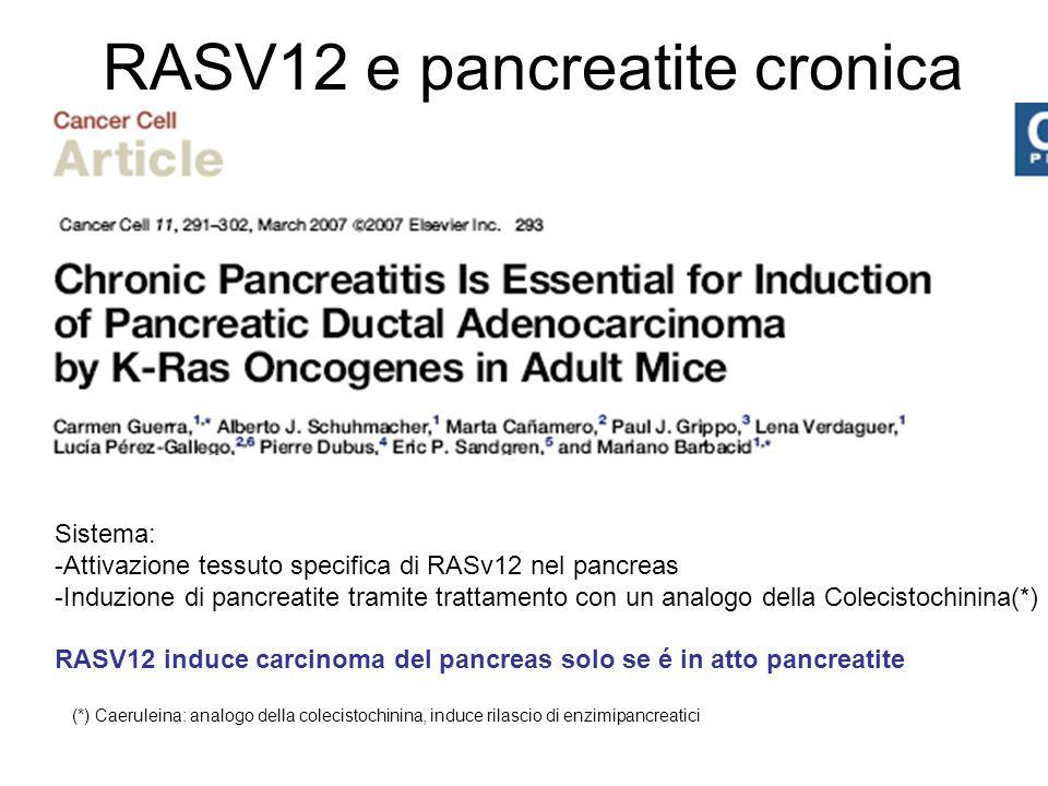 RASV12 e pancreatite cronica