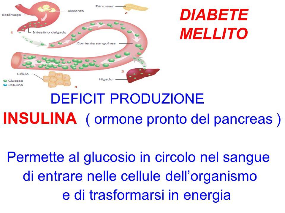 INSULINA ( ormone pronto del pancreas )