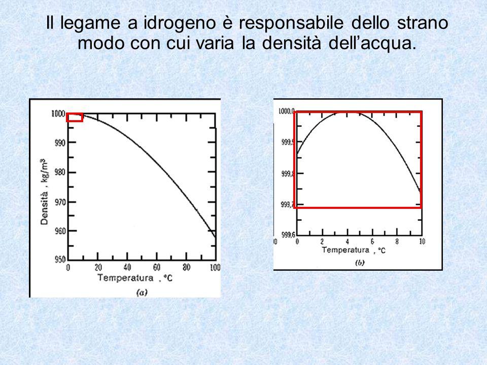 Il legame a idrogeno è responsabile dello strano modo con cui varia la densità dell'acqua.