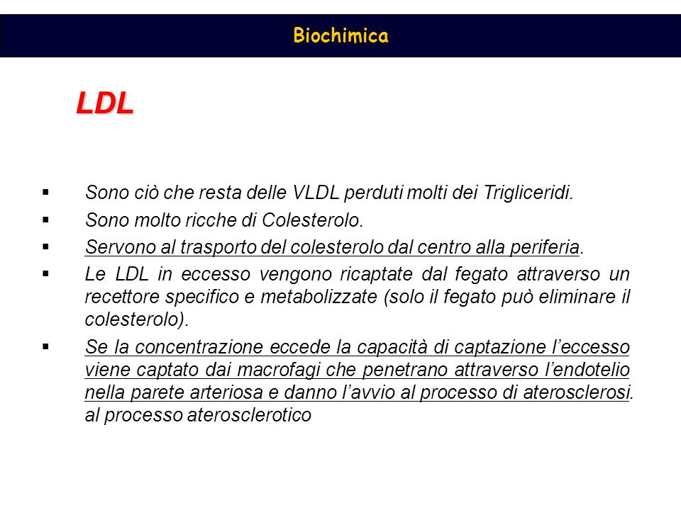LDL Sono ciò che resta delle VLDL perduti molti dei Trigliceridi.