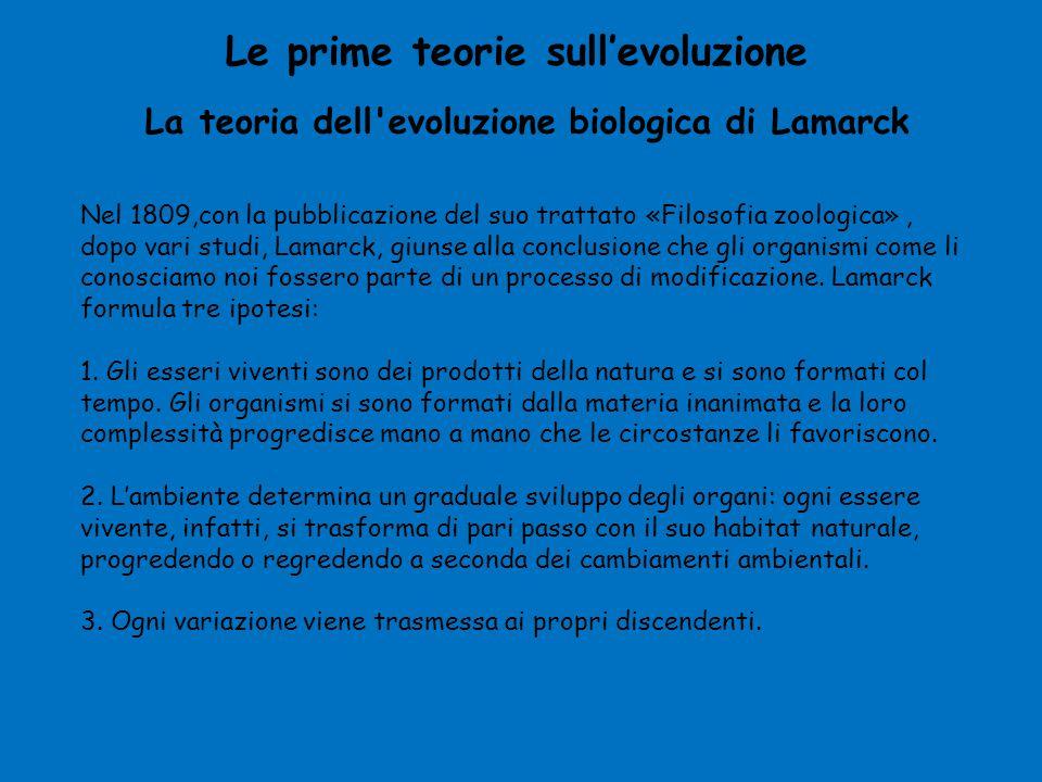 La teoria dell evoluzione biologica di Lamarck