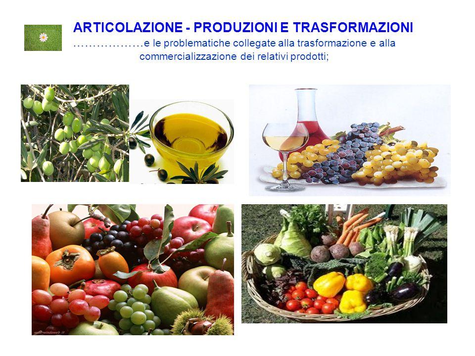 ARTICOLAZIONE - PRODUZIONI E TRASFORMAZIONI ………………e le problematiche collegate alla trasformazione e alla commercializzazione dei relativi prodotti;