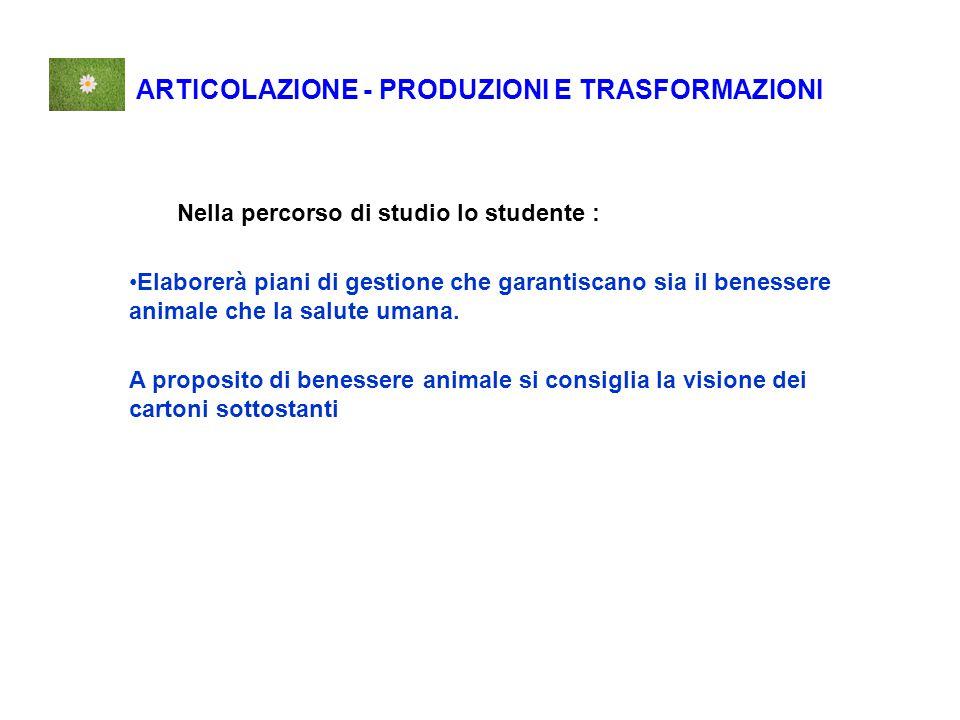ARTICOLAZIONE - PRODUZIONI E TRASFORMAZIONI