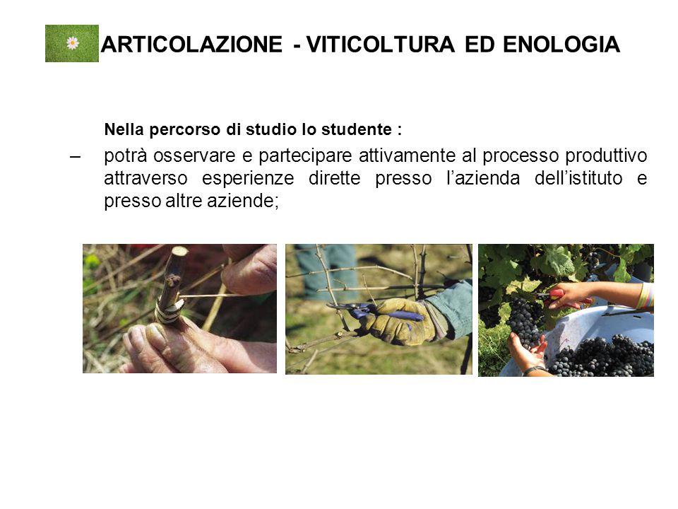ARTICOLAZIONE - VITICOLTURA ED ENOLOGIA