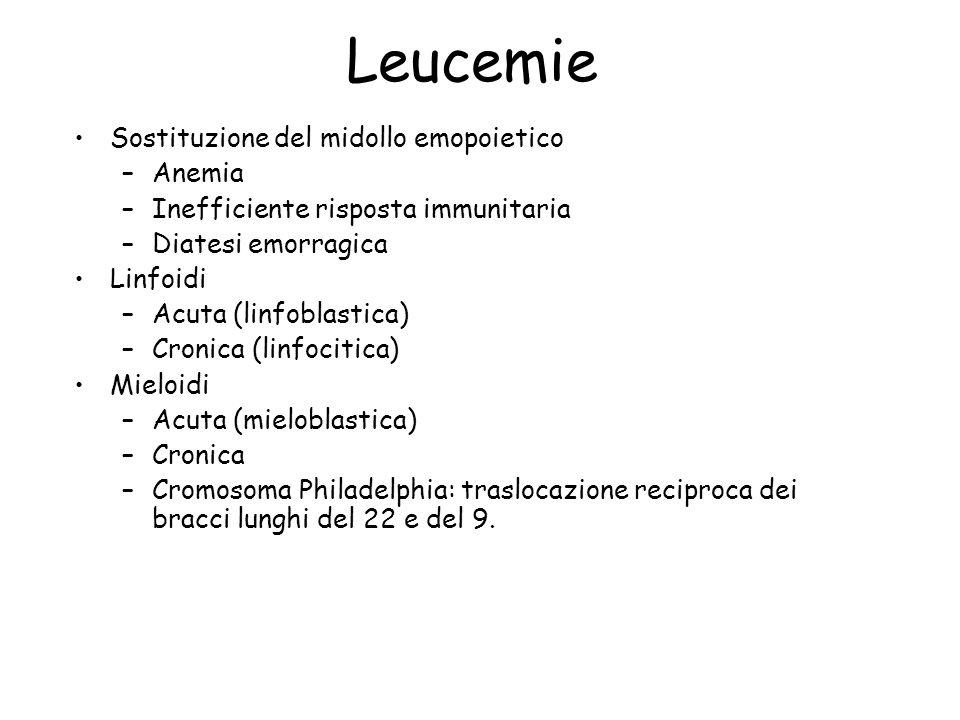 Leucemie Sostituzione del midollo emopoietico Anemia