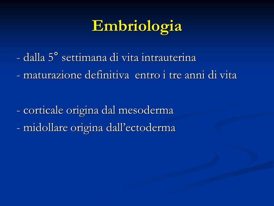 Embriologia - dalla 5° settimana di vita intrauterina