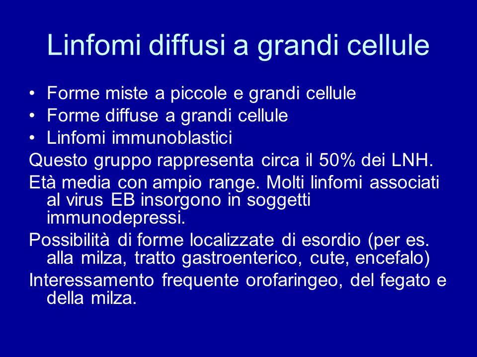 Linfomi diffusi a grandi cellule