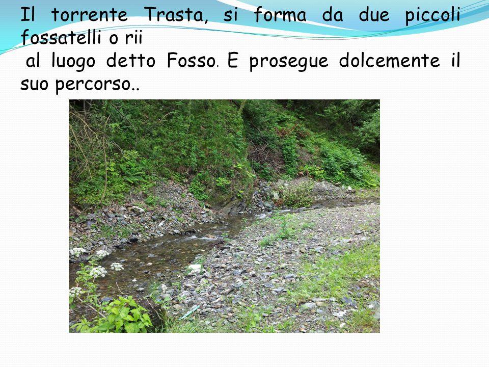 Il torrente Trasta, si forma da due piccoli fossatelli o rii