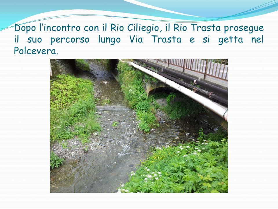 Dopo l'incontro con il Rio Ciliegio, il Rio Trasta prosegue il suo percorso lungo Via Trasta e si getta nel Polcevera.