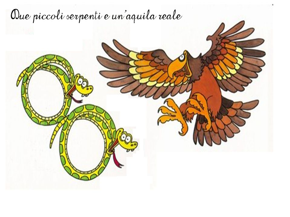 Due piccoli serpenti e un'aquila reale