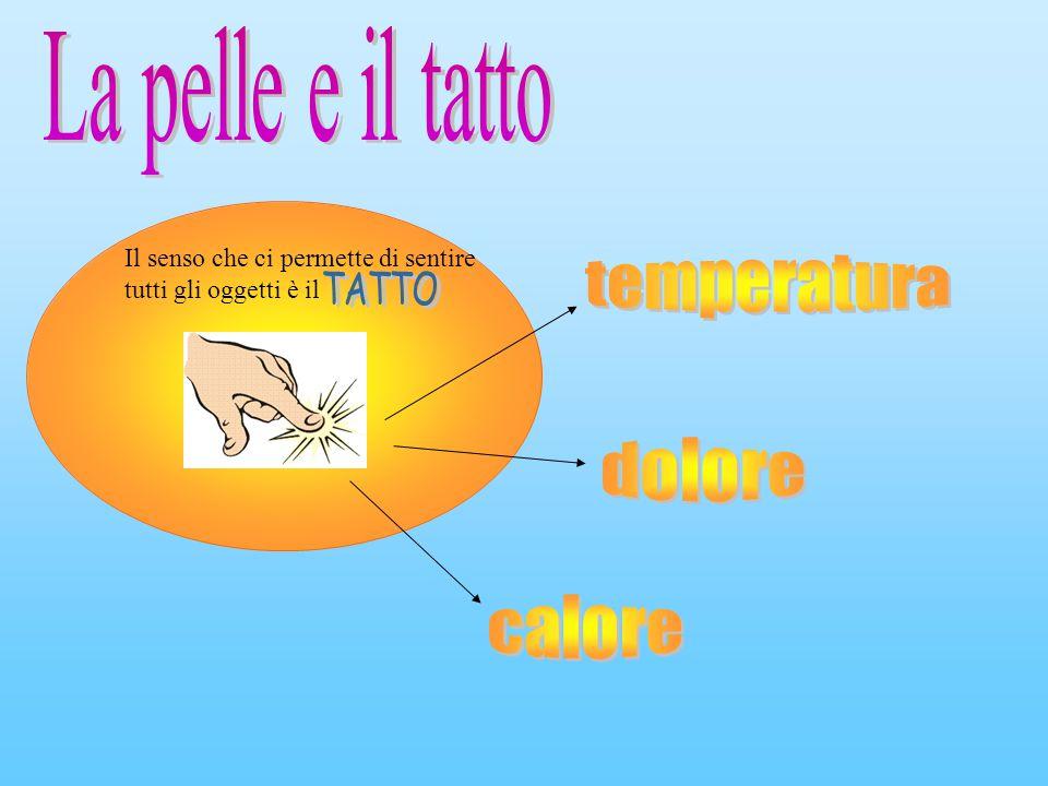 temperatura dolore calore