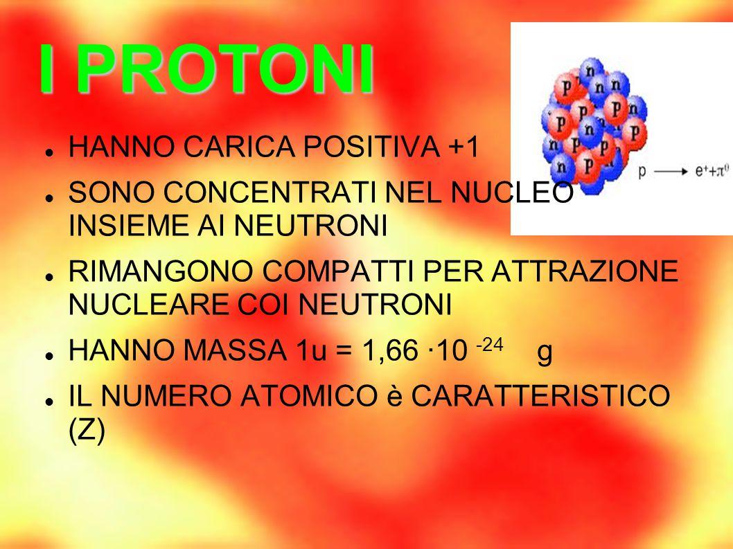I PROTONI HANNO CARICA POSITIVA +1