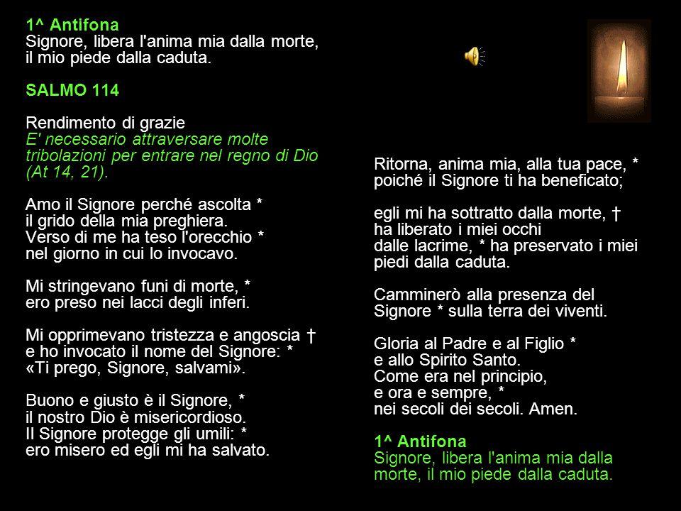 1^ Antifona Signore, libera l anima mia dalla morte, il mio piede dalla caduta. SALMO 114 Rendimento di grazie E necessario attraversare molte tribolazioni per entrare nel regno di Dio (At 14, 21). Amo il Signore perché ascolta * il grido della mia preghiera. Verso di me ha teso l orecchio * nel giorno in cui lo invocavo. Mi stringevano funi di morte, * ero preso nei lacci degli inferi. Mi opprimevano tristezza e angoscia † e ho invocato il nome del Signore: * «Ti prego, Signore, salvami». Buono e giusto è il Signore, * il nostro Dio è misericordioso. Il Signore protegge gli umili: * ero misero ed egli mi ha salvato.