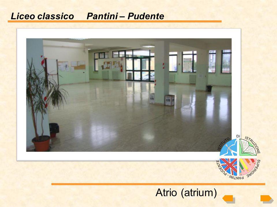 Atrio (atrium)