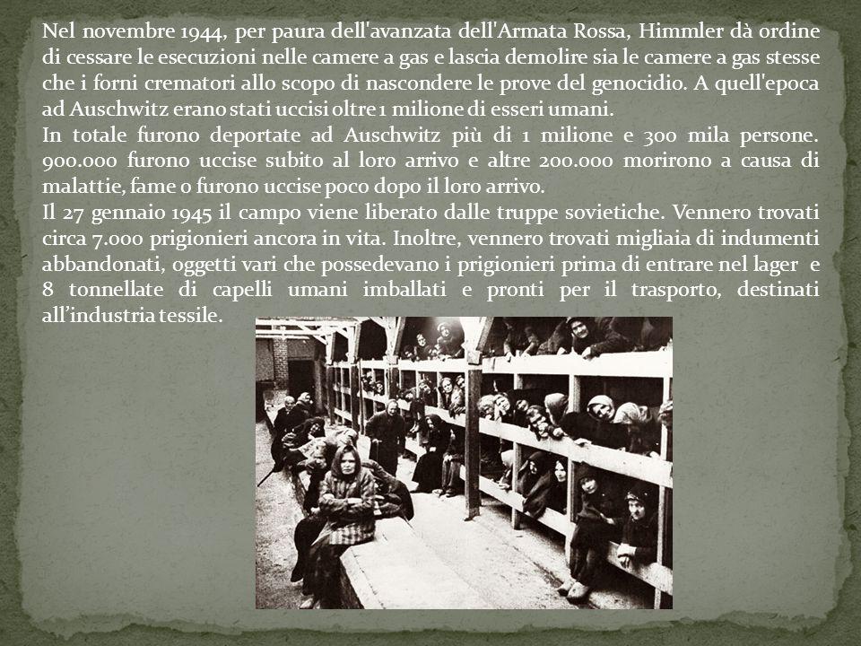 Nel novembre 1944, per paura dell avanzata dell Armata Rossa, Himmler dà ordine di cessare le esecuzioni nelle camere a gas e lascia demolire sia le camere a gas stesse che i forni crematori allo scopo di nascondere le prove del genocidio. A quell epoca ad Auschwitz erano stati uccisi oltre 1 milione di esseri umani.