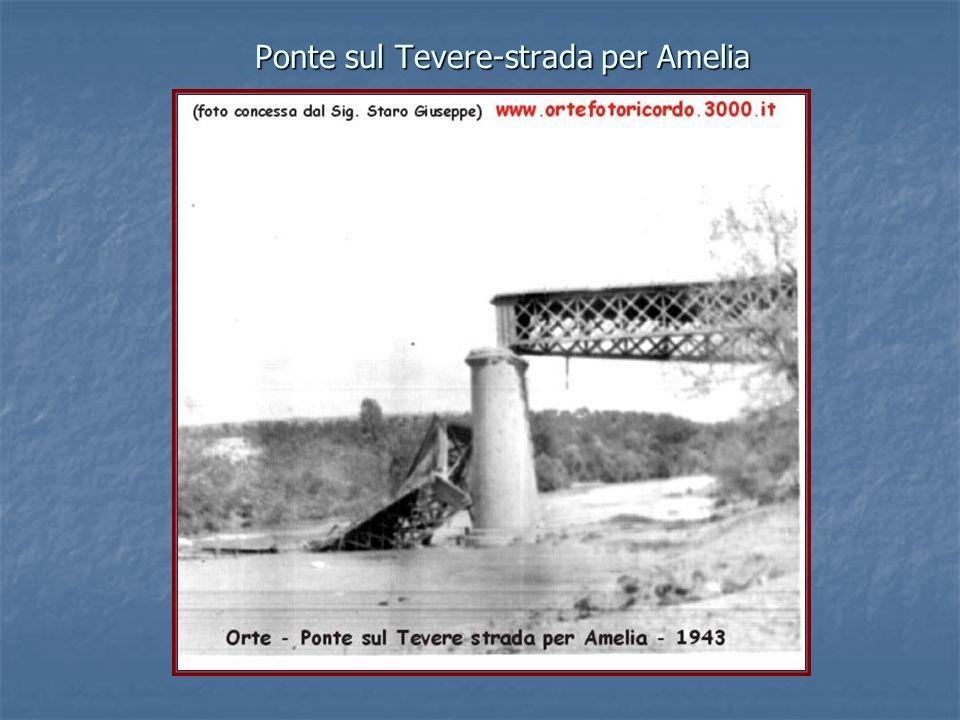 Ponte sul Tevere-strada per Amelia