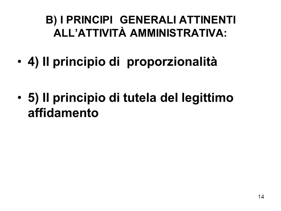 B) I PRINCIPI GENERALI ATTINENTI ALL'ATTIVITÀ AMMINISTRATIVA: