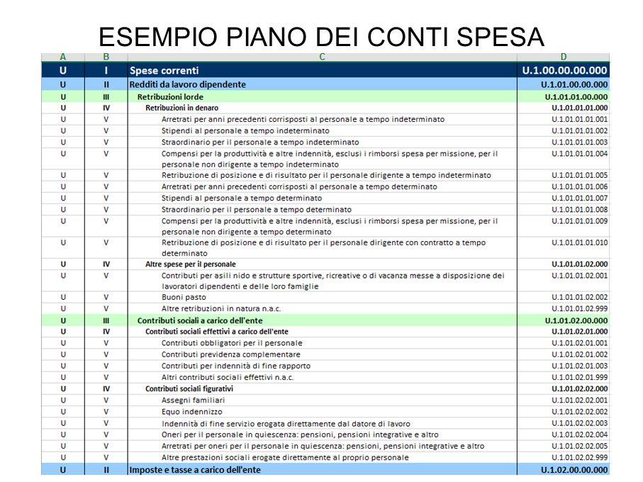 ESEMPIO PIANO DEI CONTI SPESA