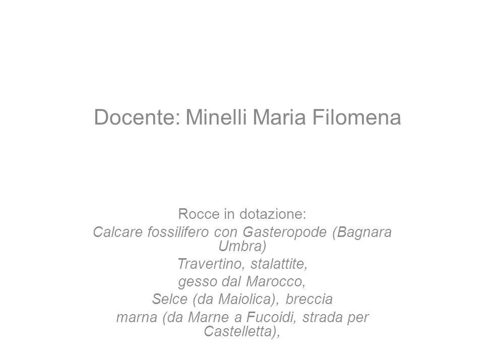 Docente: Minelli Maria Filomena