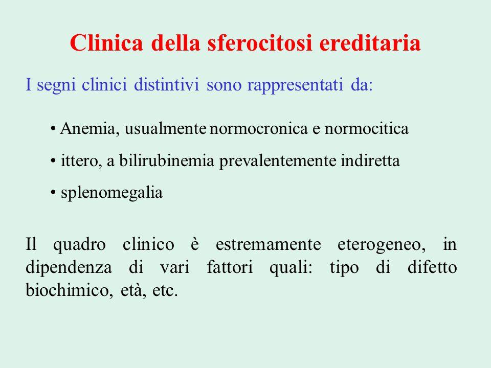 Clinica della sferocitosi ereditaria