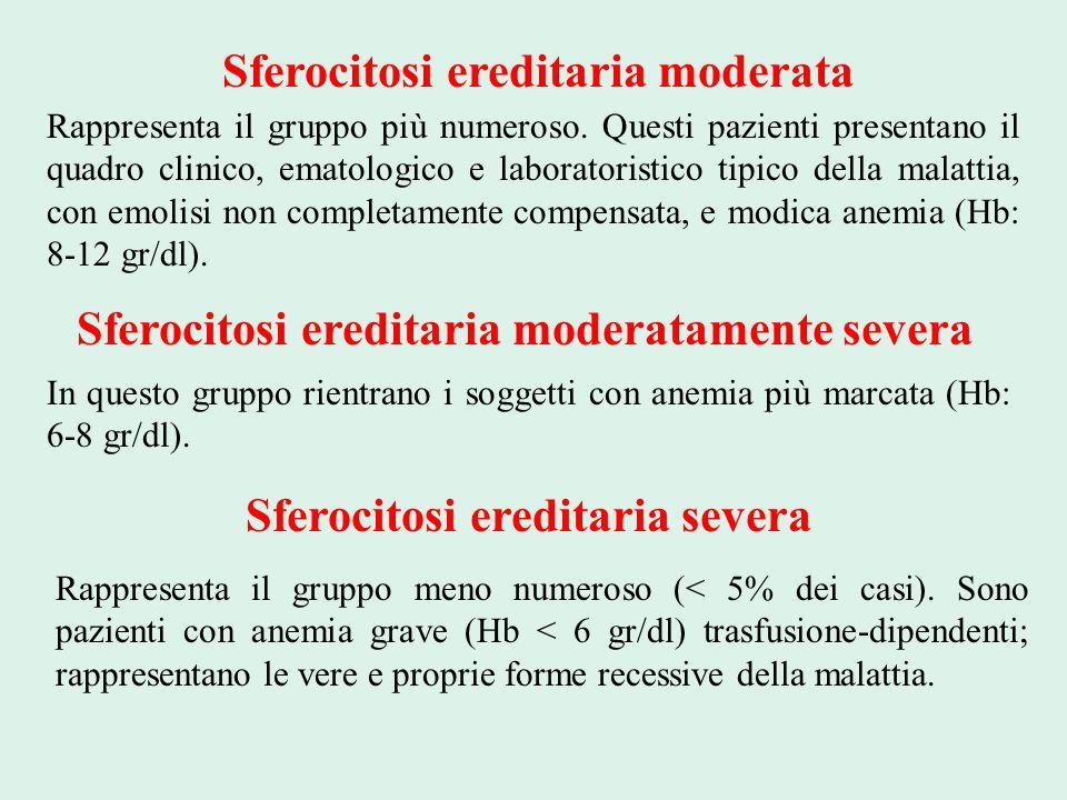 Sferocitosi ereditaria moderata