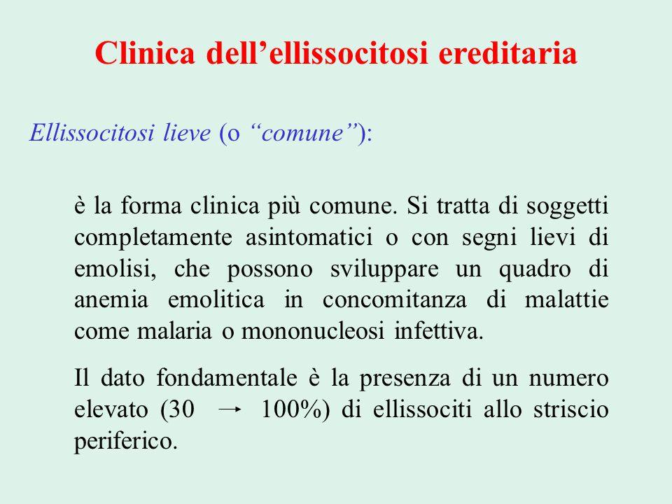 Clinica dell'ellissocitosi ereditaria