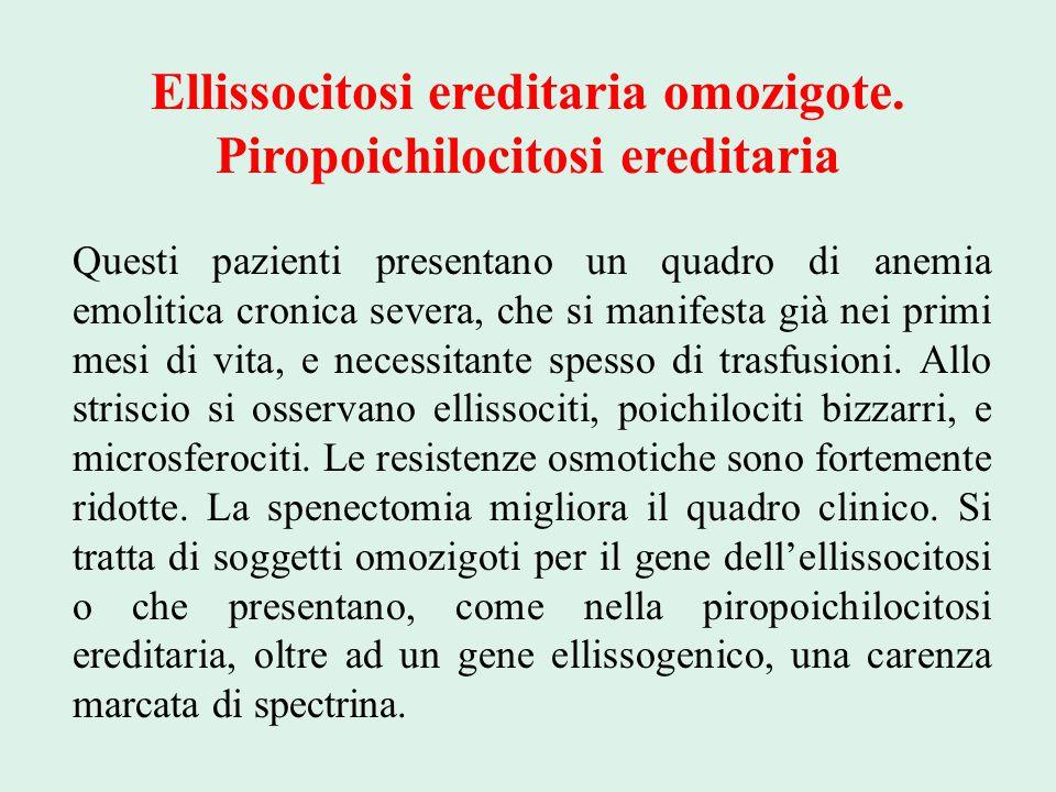 Ellissocitosi ereditaria omozigote. Piropoichilocitosi ereditaria