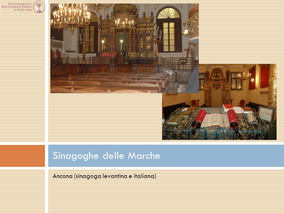 Sinagoghe delle Marche