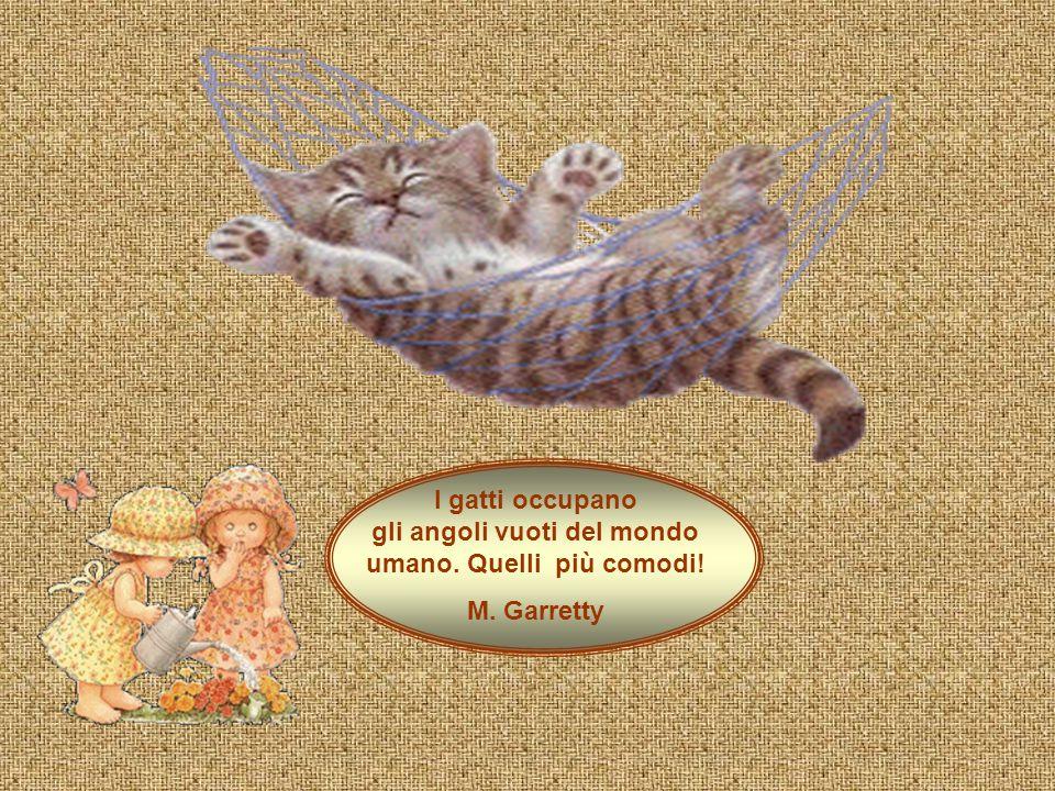 I gatti occupano gli angoli vuoti del mondo umano. Quelli più comodi!
