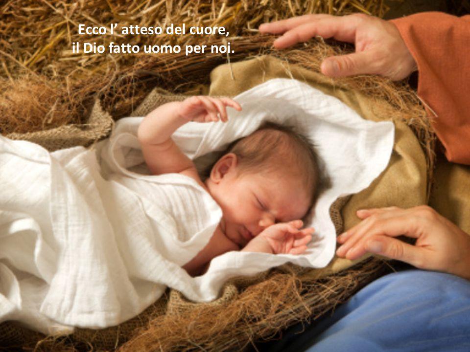 Ecco l' atteso del cuore, il Dio fatto uomo per noi.