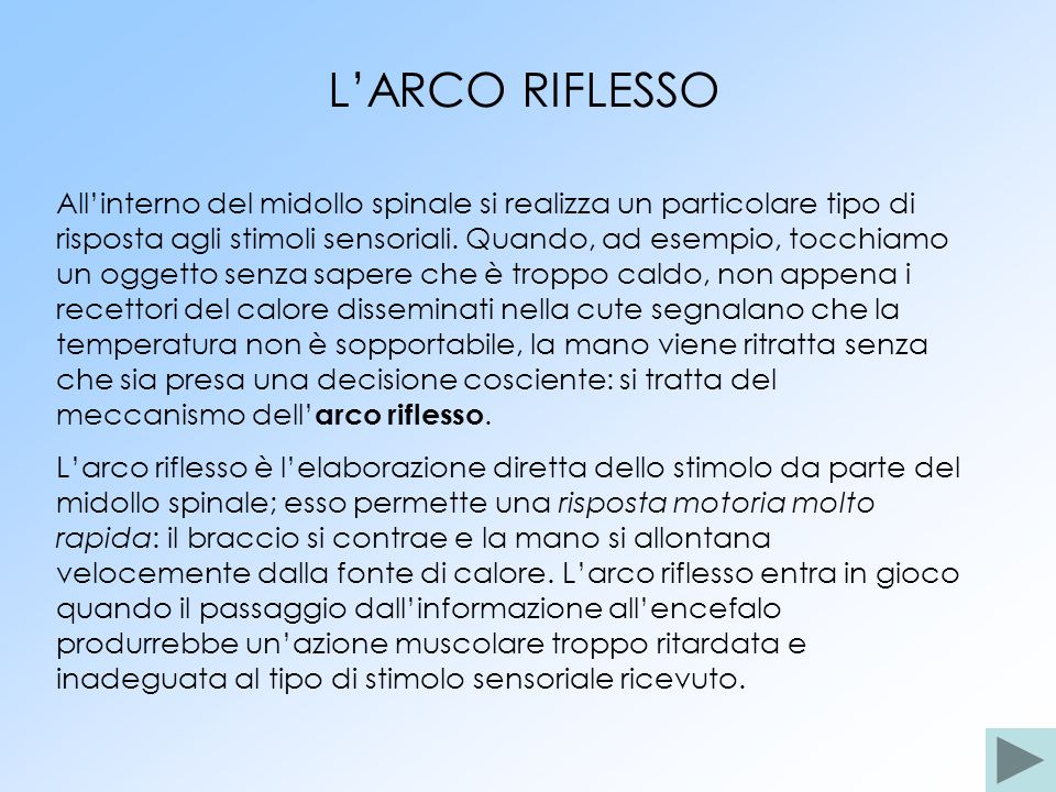 L'ARCO RIFLESSO