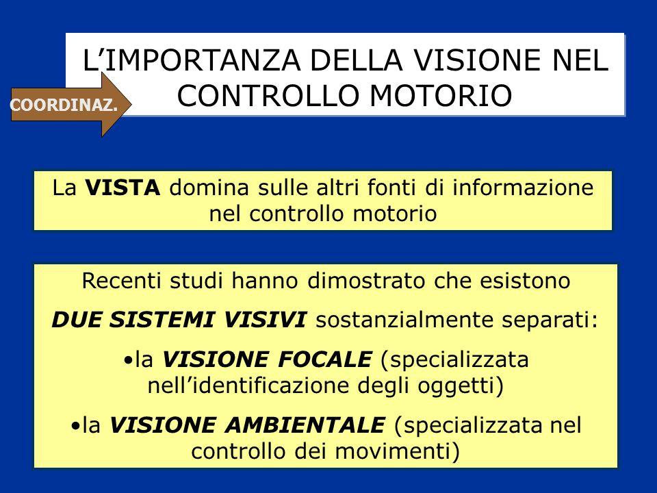 L'IMPORTANZA DELLA VISIONE NEL CONTROLLO MOTORIO