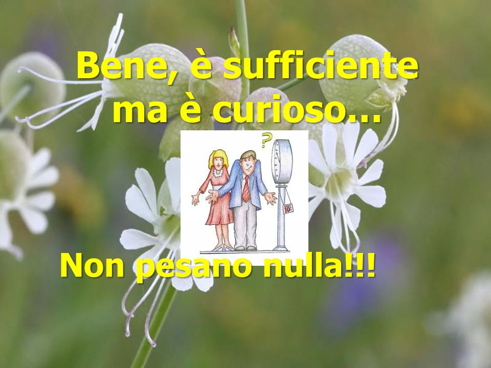 Bene, è sufficiente ma è curioso…