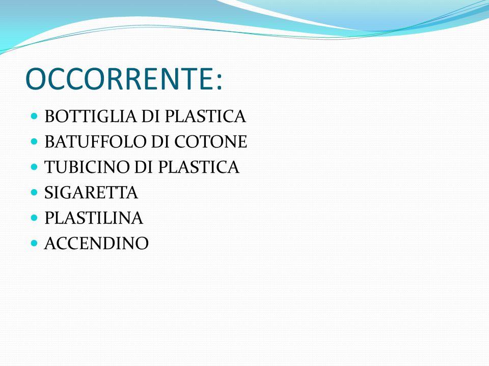 OCCORRENTE: BOTTIGLIA DI PLASTICA BATUFFOLO DI COTONE