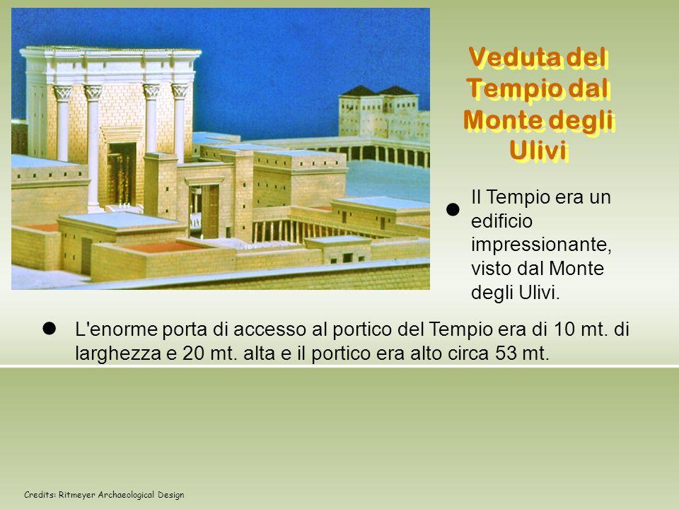 Veduta del Tempio dal Monte degli Ulivi