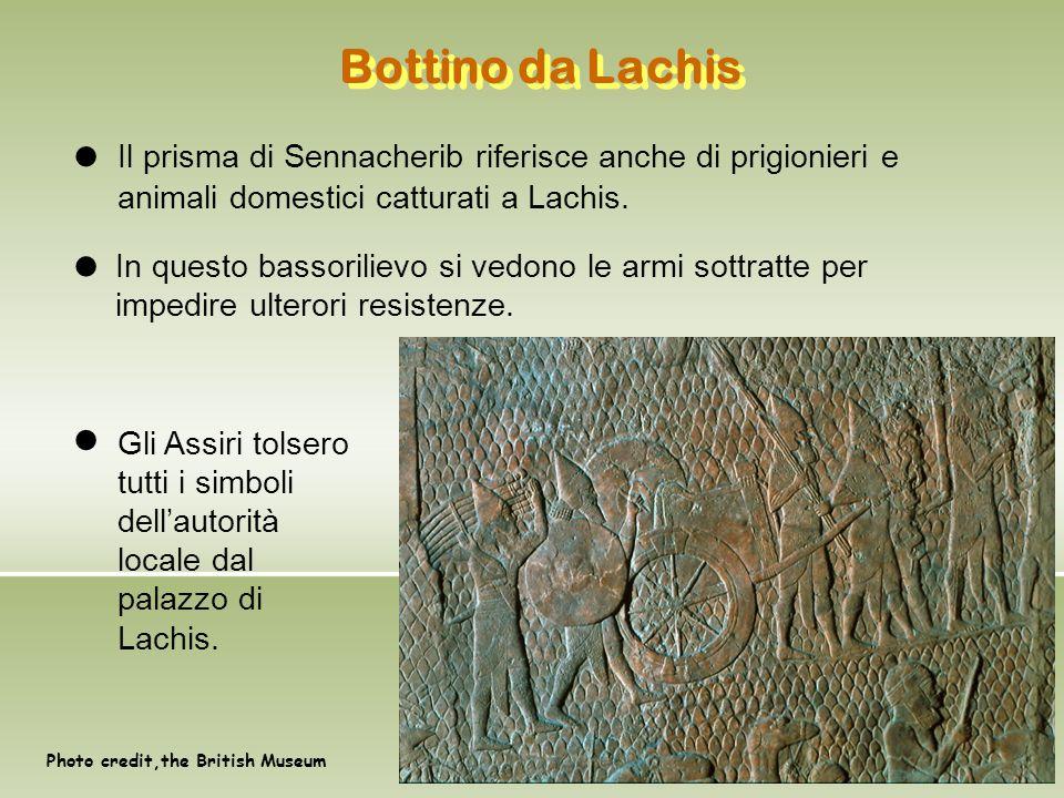 Bottino da Lachis Il prisma di Sennacherib riferisce anche di prigionieri e animali domestici catturati a Lachis.