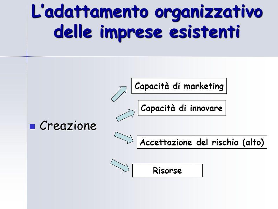 L'adattamento organizzativo delle imprese esistenti