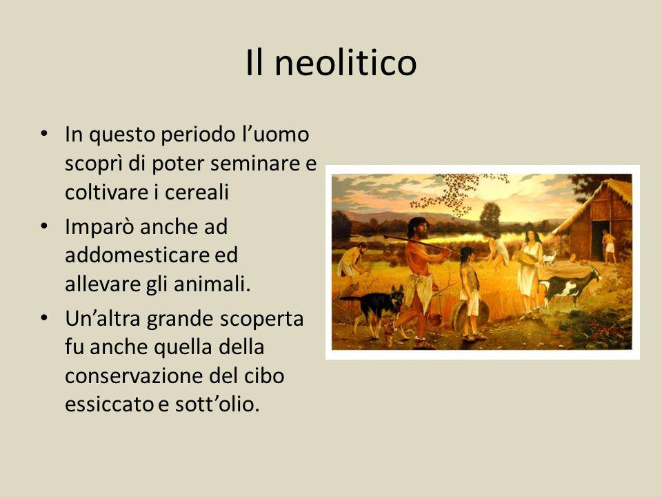 Il neolitico In questo periodo l'uomo scoprì di poter seminare e coltivare i cereali. Imparò anche ad addomesticare ed allevare gli animali.