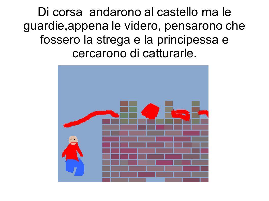Di corsa andarono al castello ma le guardie,appena le videro, pensarono che fossero la strega e la principessa e cercarono di catturarle.
