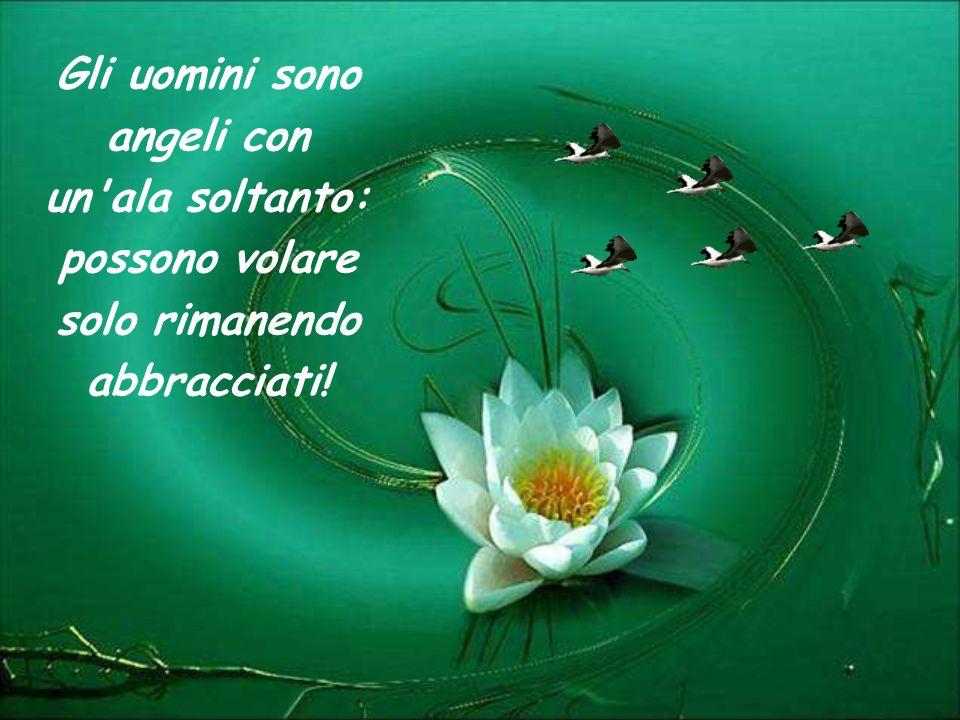 Gli uomini sono angeli con un ala soltanto: possono volare solo rimanendo abbracciati!