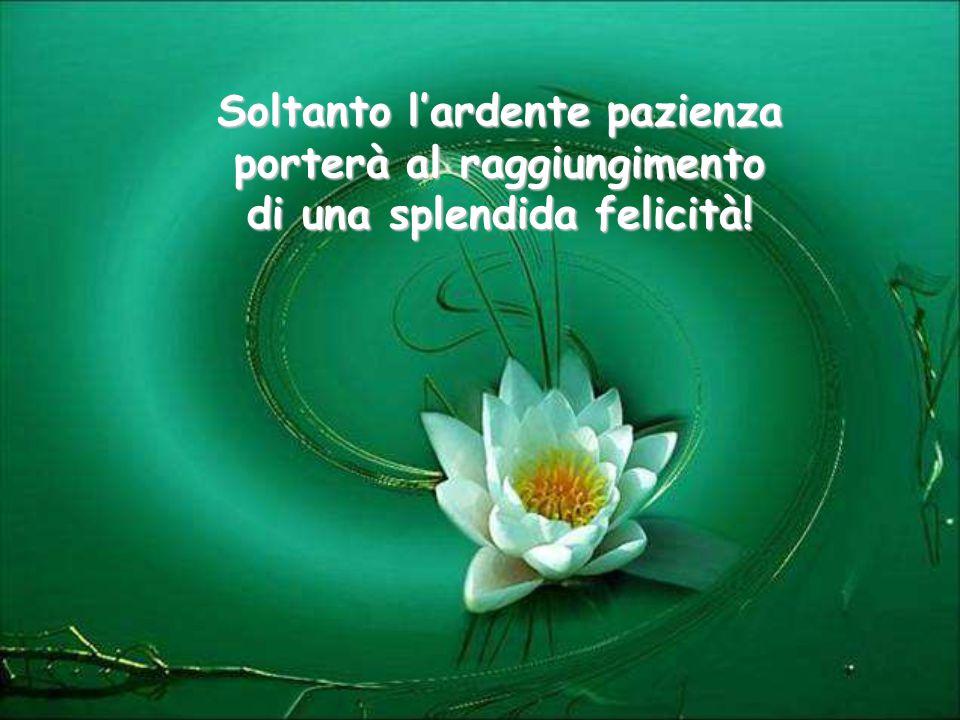 Soltanto l'ardente pazienza porterà al raggiungimento di una splendida felicità!