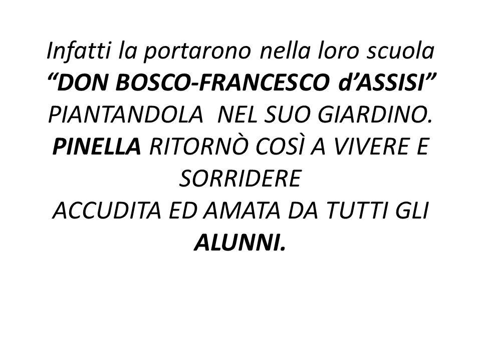 Infatti la portarono nella loro scuola DON BOSCO-FRANCESCO d'ASSISI PIANTANDOLA NEL SUO GIARDINO.