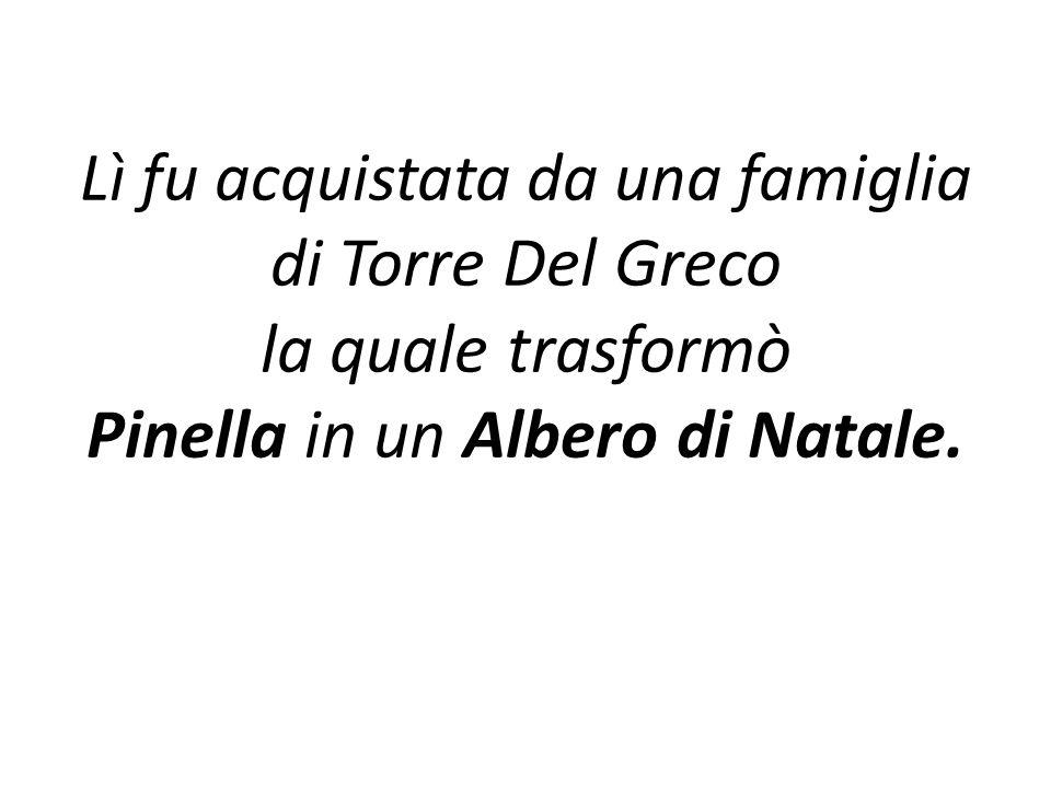 Lì fu acquistata da una famiglia di Torre Del Greco la quale trasformò Pinella in un Albero di Natale.