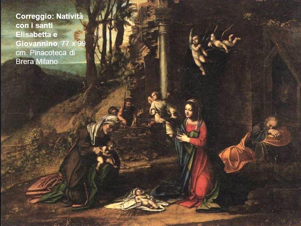 Correggio: Natività con i santi Elisabetta e Giovannino, 77 x 99 cm