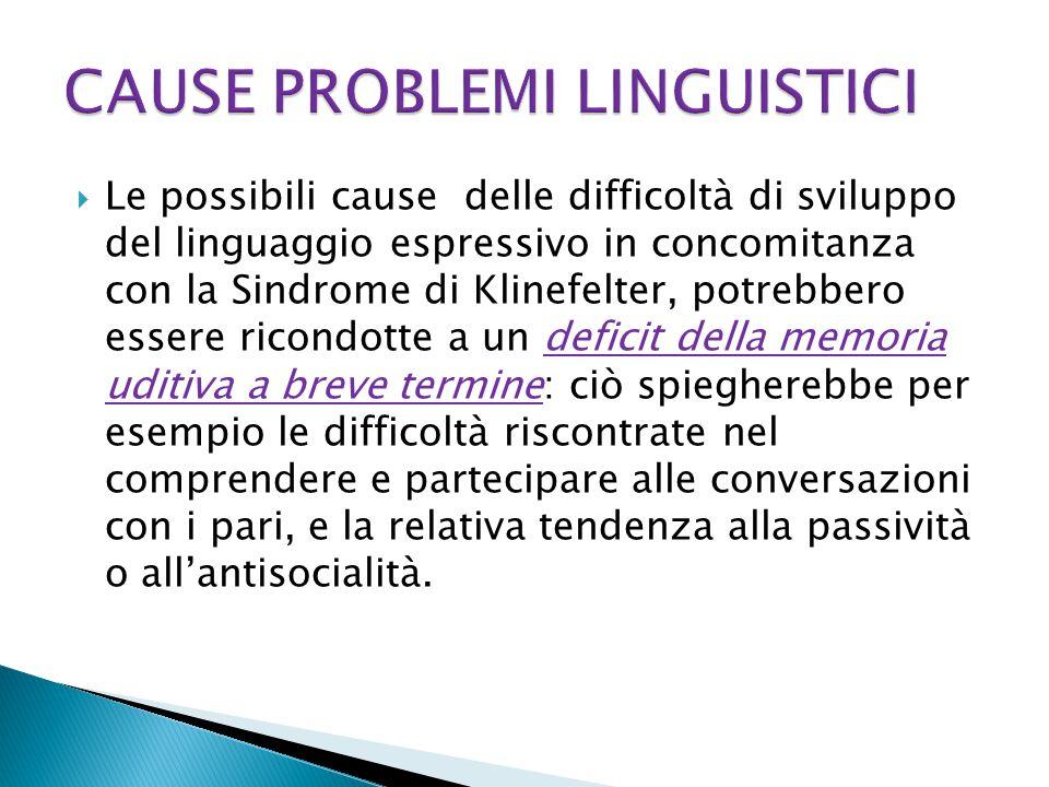 CAUSE PROBLEMI LINGUISTICI