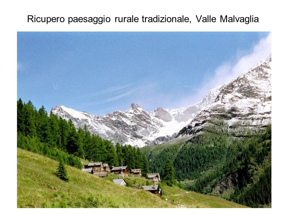 Ricupero paesaggio rurale tradizionale, Valle Malvaglia