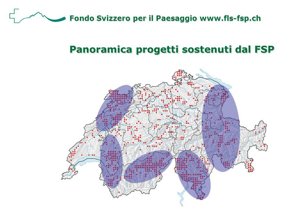 Panoramica progetti sostenuti dal FSP