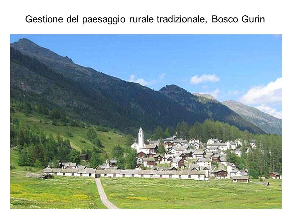 Gestione del paesaggio rurale tradizionale, Bosco Gurin
